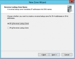 New Domain Wizard - 08 - Reverse Lookup Name